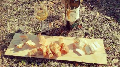 Balade viticole condrieu